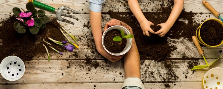 Do It Together: 5 Home Projects for You and Your Household Helpers